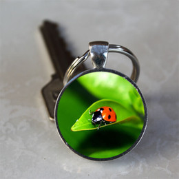 Wholesale Insect Pendants NZ - Ladybug On Leaf Insect Glass Dome Alloy Tray Pendant Keychain Keyring Pendant Gift Home Key Decorations Jewelry Accessories