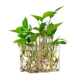 green glass bottles for 2019 - Modern Tube Shape Glass Vase Bottle For Flower Plant DIY Home Decoration Terrarium Hydroponic Green Plant Container Glas