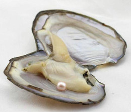 $enCountryForm.capitalKeyWord Australia - Fancy Gift Akoya High quality BLACK WHITE LILAC PINK freshwater shell pearl oyster 6-7mm mixed colors pearl oyster with vacuum packaging