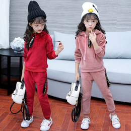 Discount gold novelty suits - 2017 New Girls Sports Suit Gold Velet Children Clothing Sets Baby Kids Sportswear Big Girls Hoodies Shirt & Pants Twinse