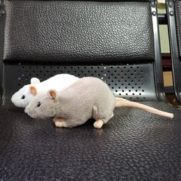 pet toy chicken Australia - 17 Long Real Life Small White Mouse Plush Toy Realistic Grey Mice Stuffed Animals Toys Lifelike Rat Toy Gifts For Kids Pets