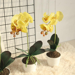 Real Flower Setting Australia - one set real touch artificial orchid with vase silk flowers in vase butter flower orchid flowers home decoration craft supplies GF15479