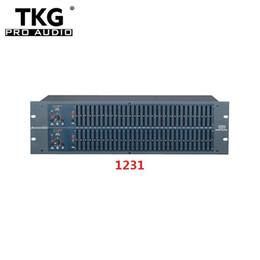 TKG stage 1231 dj equipment audio equipment audio sound system Égaliseur graphique Dual Channel 31 Band Karaoke 1231 Egaliseur en Solde