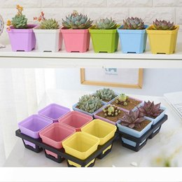 green plastic plant pots UK - A Wholesale High Quality thick Colorful Square mini Flower Pot charm planting for Home Garden Decoration home Chamber tables decor