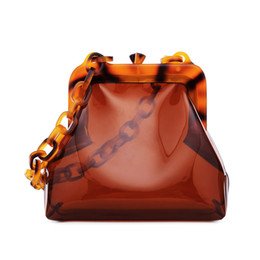 handbags new trend Canada - New Transparent Women Bag Summer New Vintage Holiday Chain Jelly Package Cute Mini Shouldered Bag Trend Designer Handbag Ins
