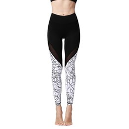 c684bd358aa00 High Waist Yoga Gym Pants 2019 New Style Fashion Hot Women Fitness Sport  Patchwork Running Tights Jogging Leggings Yoga Pants