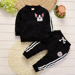 New England Clothes Australia - 2019 new Spring Autumn Children Boys Girls Clothing Suits Fashion Baby Embroidery Cartoon Dog T-shirt Pants 2Pcs sets Toddler Tracksuit