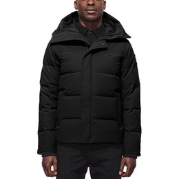 $enCountryForm.capitalKeyWord Australia - 2019 Goose Mens Winter Jacket Famous Brand Designer High Quality White Goose Down Men Down Plus Size Men'S Warm Outdoor Parkas