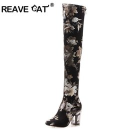 ac73be09d16 REAVE CAT Slouchy Boot over the knee thigh high boots woman Round toe Zip  Clear Square Block heel colorful Stretch fabric