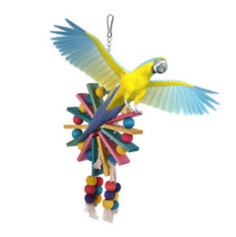 Chinese  toy supplies Bird cage cockatiel feeder Parrot Colour Wood Gnaw Toys Nibble Bite Price chicken manufacturers