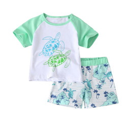Wholesale turtle boy for sale – custom Kids Boys Shorts Suits Turtle Printed Tops Splice T shirts Kids Designes Clothes Boys Elastic Cartoon Striped Shorts Toddler Outfits