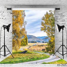 $enCountryForm.capitalKeyWord Australia - yellow trees pathway mountain vinyl photography background for photo shoot 5X7ft cloth backdrop for children baby wedding photo shootings