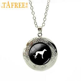 China TAFREE cute animal picture locket necklace Greyhound Dog pendant pet dog statement necklace Pleut Gift men women jewelry T413 cheap greyhound dogs suppliers