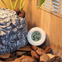 $enCountryForm.capitalKeyWord Australia - eptiles Amphibians Temperature Control Products Hoomall Lizard Amphibian Terrarium Tortoise Temperature Humidity Meter Thermo-Hygrometer ...