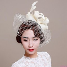 mesh veils UK - New Vintage Fascinator Cambric Feather Mesh Wedding Hairband Women Clip Net Veil Cocktail Hat Veiling Headdress Hair Accessories