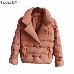 $enCountryForm.capitalKeyWord Australia - Tcyeek Women's 2019 New Fashion Winter Coats and Jackets Early Spring Down Cotton Warm Coat Female Office Ladies Clothing LWL224 T5190603