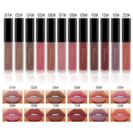 $enCountryForm.capitalKeyWord NZ - Free Shipping NICEFACE Matte Long-Lasting Lipstick 12 Colors Sets Lip Gloss Waterproof Lip Stick Sexy Kit Beauty Lips Paint Makeup Lipstick