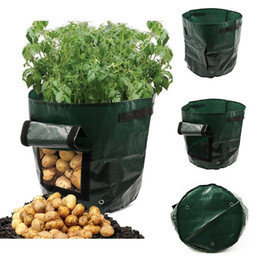 Wholesale Fashion Foldable PE Potato Planting Bag Garden Bucket Gardening Plant Growth Bag New Growth Bag