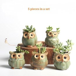 $enCountryForm.capitalKeyWord Australia - 5pc set Cartoon Owl-shaped Flower Pot For Succulents Fleshy Plants Flowerpot Ceramic Small Mini Home garden office Decoration Q190604