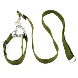 China Walking Dog Necessary Kit Durable Collar Leash Kit Pet Safe Travel Leading Set for Dogs cheap led safe suppliers