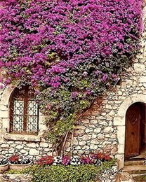$enCountryForm.capitalKeyWord NZ - 16x20'' Spring Purple Flowers Fill The Entire Wall DIY Paint By Numbers Kits On Canvas Art Acrylic Oil Painting