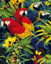 Figure Cut Australia - 40x50cm by numbers Figure decorative painting on the wall on canvas, oil paint Coloring by numbers drawing animals parrot