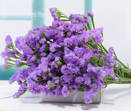 $enCountryForm.capitalKeyWord UK - TooGet Natural dried flowers Forget Me Not Bouquet Myosotis Sylvatica bunch, really fresh harvested dried flowers are decorated