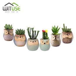$enCountryForm.capitalKeyWord Australia - Wituse 6x Cute Owl Face Ceramic Flower Pots Small Glazed Plant Pot For Succulents Planter Garden Home Decors Herb Vases