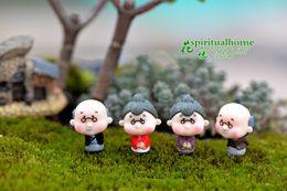 $enCountryForm.capitalKeyWord Australia - 2019 crafts bonsai doll house miniatures DIY Old Granny fairy garden gnome animals moss terrarium home desktop decor