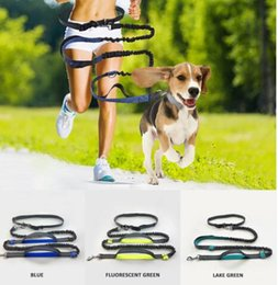 $enCountryForm.capitalKeyWord Australia - Wholesales Free shipping Reflective Hands Dog Lead Running Jogging Waist Belt Training Bungee Leash Leashes Dog Collars