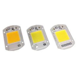 Wholesale 20w 30w 50w LED COB CHIP AC220V 110V NO Need LED DRIVER LED floodlight Lamp White warm white  full spectrnm