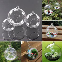 $enCountryForm.capitalKeyWord Australia - 3Size Clear Glass Vases Ball Flower Hanging Transparent Vase Planter Terrarium Container Glass Home Decor