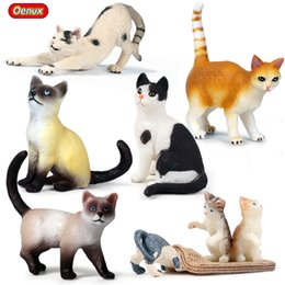 $enCountryForm.capitalKeyWord Australia - ction & Toy Figures Oenux Poultry Animals Cat Model Action Figure Tomcat Kitty Figurine Mini Cute Pet Decoration Accessories Educatio...