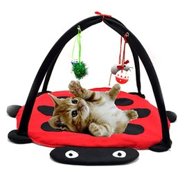 small room beds NZ - Hanging Bell Bug cat tent Pet Bed Toys Mobile Activity Playing Mat Pad Pet Room Blanket House Cats Furniture Tent