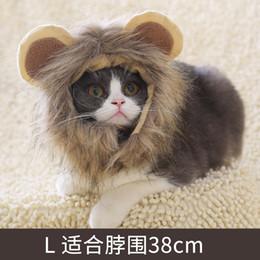 Little Hats Australia - Lion little Ear Wig Dog Hat Wholesale Teddy Turn Into A Hat Funny Hat Cat Dog Headgear