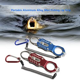 fish lip grips Canada - Lixada Portable Aluminum Alloy Mini Fishing Lip Grip Fish Lip Gripper Grips Fishing Accessories Tools Tackle