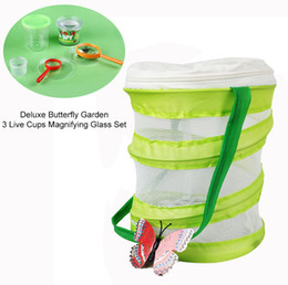 Big Caterpillar Toys Australia - Deluxe Butterfly Garden Gift Set with 3 Live Cup of Caterpillars Habitat Magnifying Glass Set Customized & Wholesale
