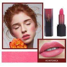 $enCountryForm.capitalKeyWord NZ - Velvet Glossy Lip Gloss Lipstick Hot Sales Waterproof Matte Lip Sexy Red Tint 10 Colors Women Fashion Makeup Gift