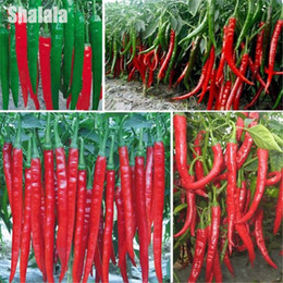 Hottest Pepper Seeds Canada | Best Selling Hottest Pepper