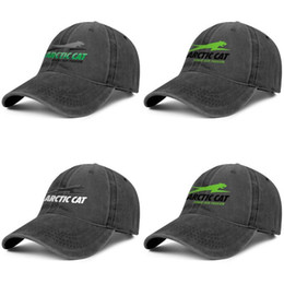 motorcycle ball caps NZ - Arctic Cat motorcycle Logo Unisex Fashion Baseball Cap Ball Fitted Adjustable Vintage Hat Blank Denim arctic cat share our passion