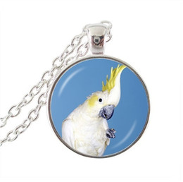 Glasses Face Long Australia - 2019 new fashion pendant vintage parrot pendant necklace handmade women necklace glass dome bird photo jewelry necklace long
