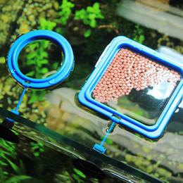 Großhandel Nicrew Aquarium Futterring-Fisch-Behälter Floating Food Tray Feeder Square Circle Zubehör Wasserpflanze Buoyancy Saugnapf