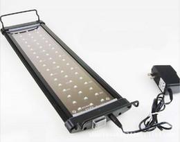 Ingrosso luce corallo bianco blu e principale si sviluppa pesci della luce LED del carro armato Corallo Lampada per Freshwater impianto versione