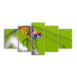Art Canvas Prints Australia - 5 pieces high-definition print dragonfly canvas painting poster and wall art living room picture QIT5-002