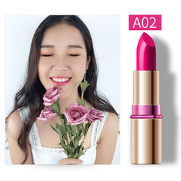 yellow lipsticks Australia - 9 Colors Matte Lipstick Makeup Waterproof Women Lipstick Cosmetics Long Lasting Lipsticks new
