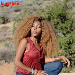 Bulk Hair Braids NZ - 18Inch 30Roots Crochet Braids Hair Ombre Afro Kinky Kanekalon Synthetic Marley Braiding Hair Crochet Hair Extensions Bulk for Black Women
