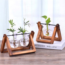 Terrarium Plants Nz Buy New Terrarium Plants Online From Best