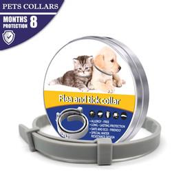 2019 Bayer Seresto Collier pour chiens Collier anti-moustiques Collier anti-insectes pour chiens de compagnie Chats Anti-puces tiques Poux Empêche en Solde