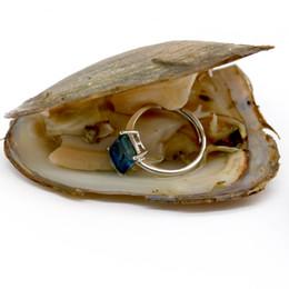 Ingrosso Ostrisce d'acqua dolce della fortuna con anello in argento sterling anello di gemma o anello di perle Regali di gioielli Shell Love Wish Pearl Oyster Vacuum-confezionato sottovuoto