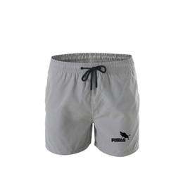 Gray cute fashion pants online shopping - 2019 hot new fashion funny men s beach pants cute shorts homme Pumba men s shorts hip hop summer jersey fashion